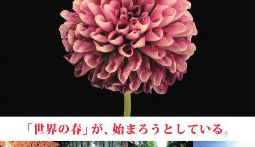 12月のJOY∞JOBシネマ『オキュパイ・ラブ』